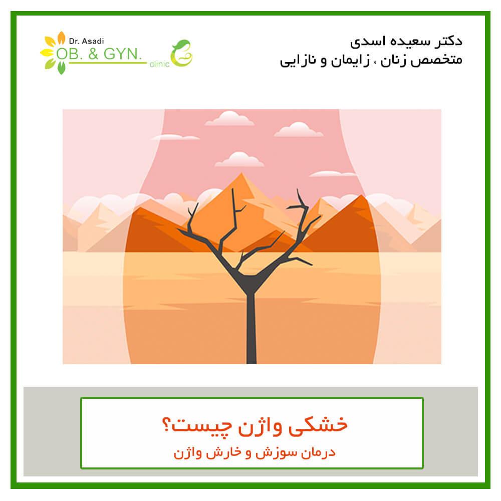 درمان خشکی واژن | دکتر سعیده اسدی٬ متخصص زنان