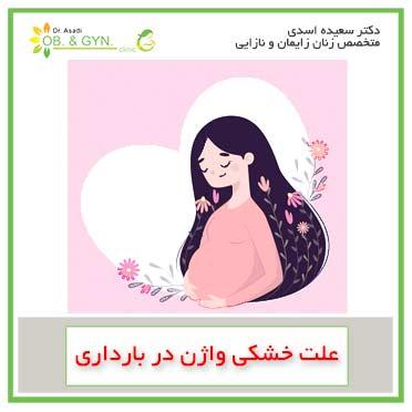 خشکی واژن در بارداری | دکتر سعیده اسدی٬ متخصص زنان و زایمان